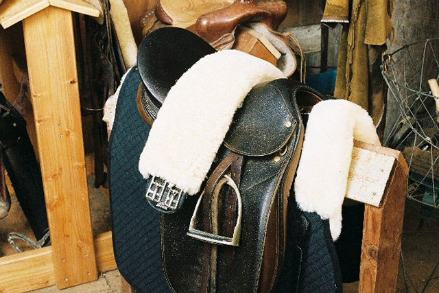 Girth Strap Cover Dressage/All Purpose