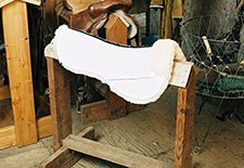 Saddle Pads - Half Pads
