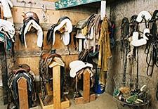 Horse Tack Closeouts
