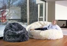 Bean Bags & Furniture